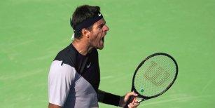 Juan Martín del Potro venció a Milos Raonic en la semifinal de Indian Wells