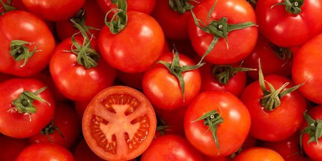 Los industriales y el Gobierno enfrentados por la importación de tomates