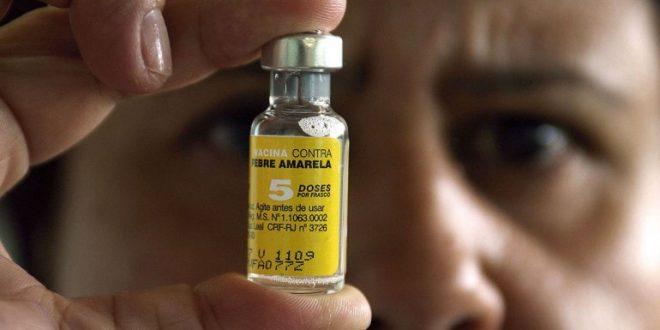 Argentina comenzará a producir una vacuna contra la fiebre amarilla