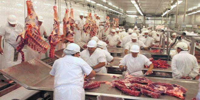 La Argentina exportará carne bovina y ovina a Japón por primera vez en la historia