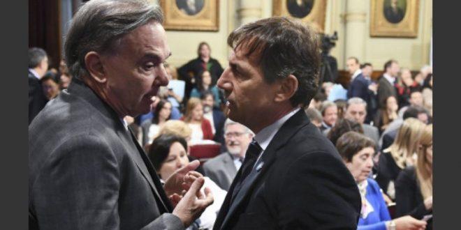 Pichetto y Naidenoff dijeron que la ley de Aborto también se aprobará en el Senado