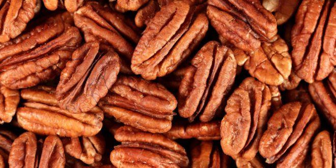 Se abren nuevos mercados para productos agroindustriales en Brasil y Marruecos