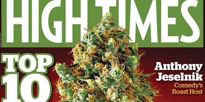 La revista de cannabis HTHC , acepta bitcoin y ethereum para atraer inversores