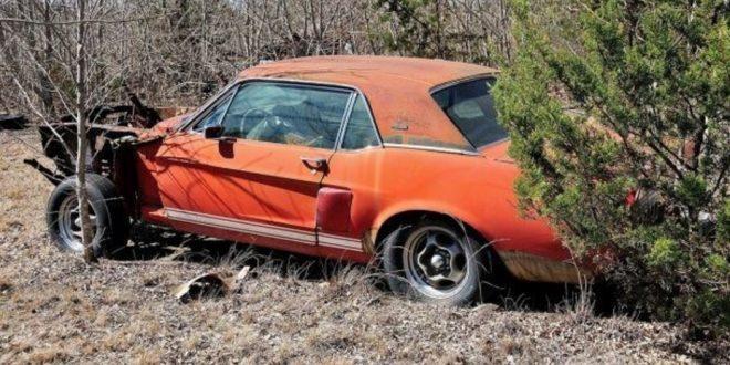 Tuvo 20 años un auto tirado a la intemperie sin saber que es una joya que vale una fortuna