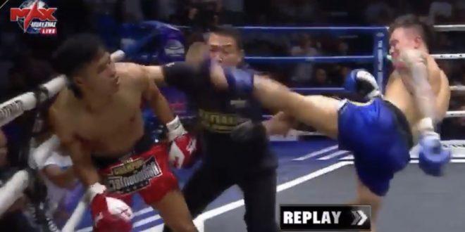 Video : Boxeador noqueó a su rival y al árbitro al mismo tiempo