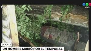 Murió un hombre al caer un árbol sobre su vivienda