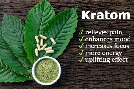 Qué es y qué efectos tiene el kratom, la planta de la familia del café que la DEA quiere prohibir