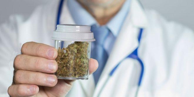 La OMS recomendó quitar el cannabis de la lista de sustancias dañinas
