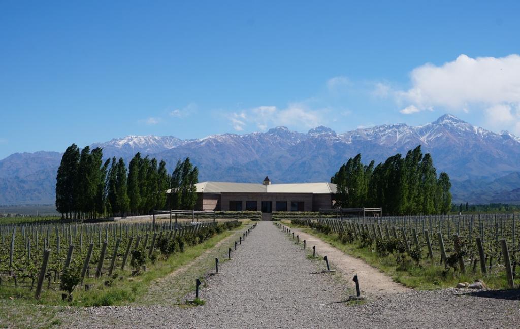 Conociendo los mejores vinos y los mejores hoteles de Mendoza
