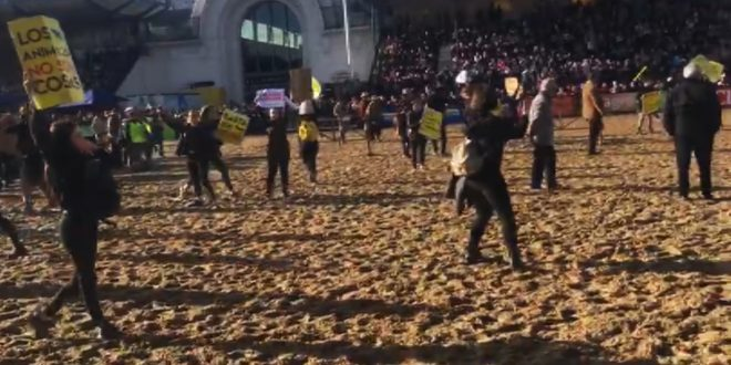 Veganos invadieron la pista en la Exposición Rural y los gauchos los corrieron con caballos