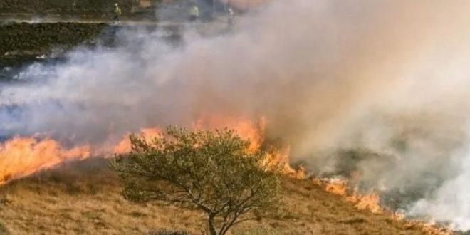 """Se incendia """"el segundo pulmón verde"""" del planeta y lanzan una Alerta Mundial"""