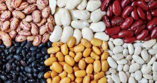Beneficios para la salud de comer porotos