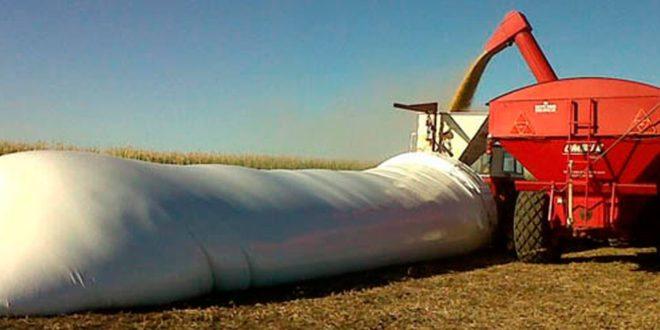 """Sociedad Rural: """"El campo no va a liquidar los granos"""""""