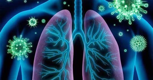 Cómo limpiar tus pulmones